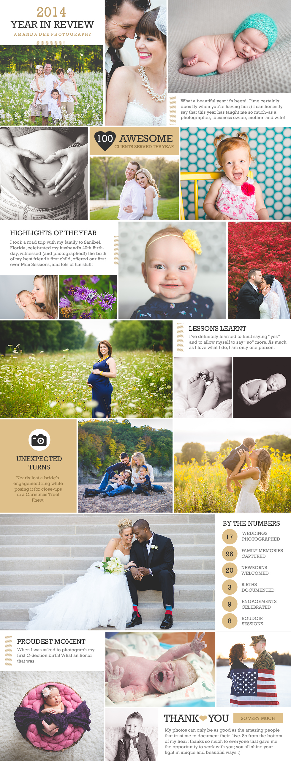 AmandaDeePhotography2014YearInReviewBlogPostBoard